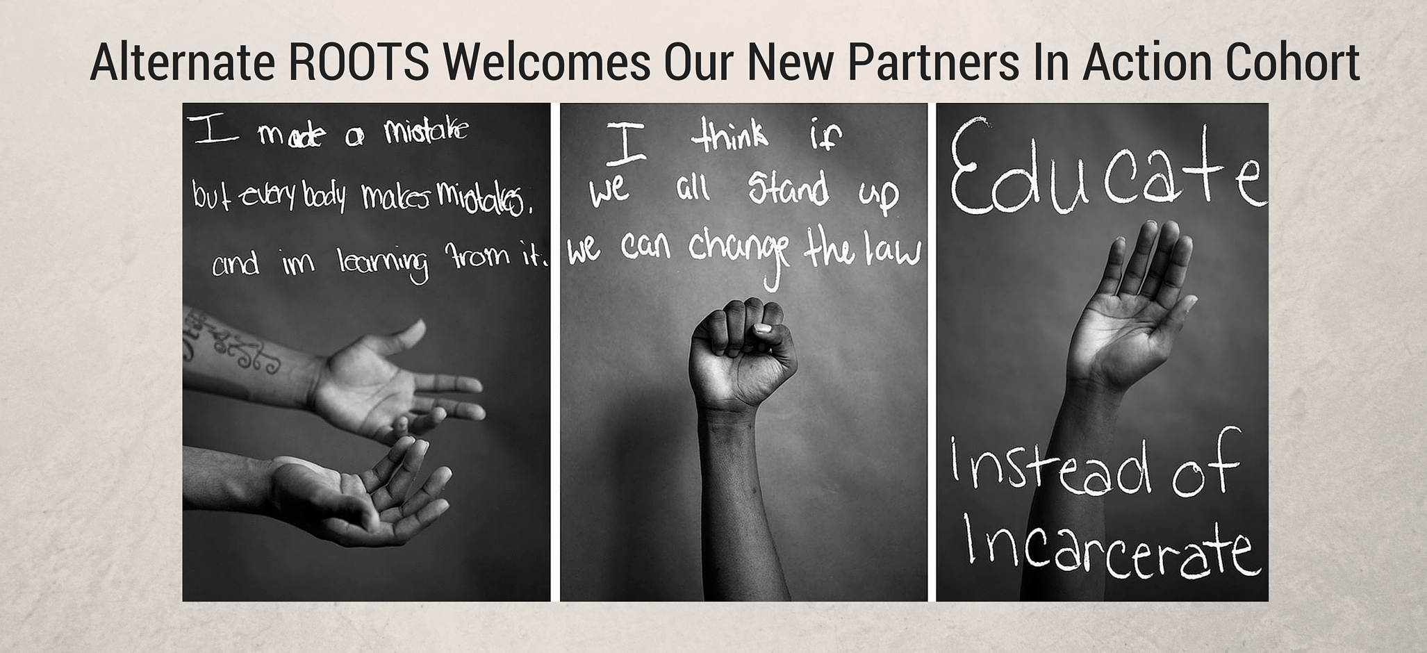 ROOTS 2015 Partners In Action Cohort