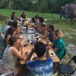 The Collaborative Arts Mobility Project, or CAMP, an experimental summer arts residency program for 20 working artists across disciplines, celebrating banquet-style at Azule grounds.